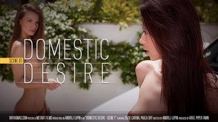 Viv Thomas Domestic Desire Scene 1 Paula Shy & Suzie Carina