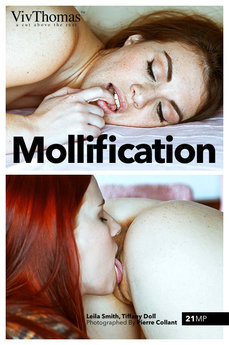 Mollification