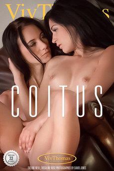 Coitus