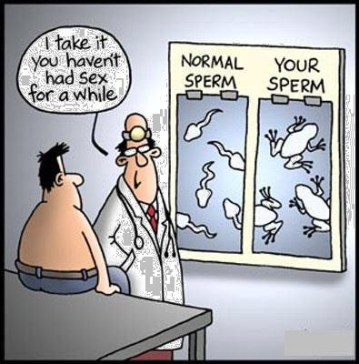 sperm-cartoon